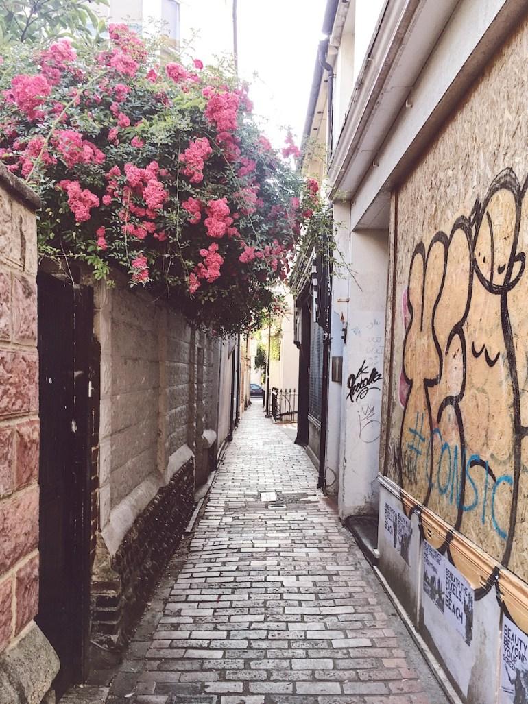 ship street gardens brighton Twitter