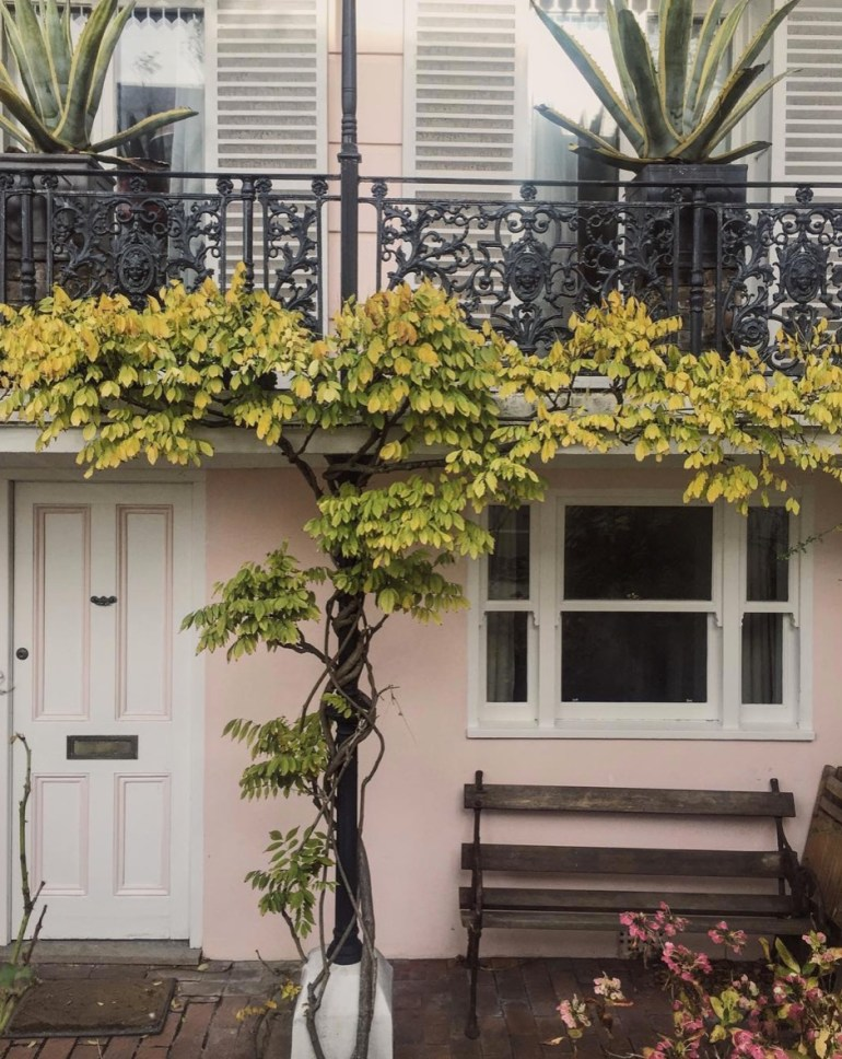 clifton terrace brighton notting hill of brighton ellie and co blog