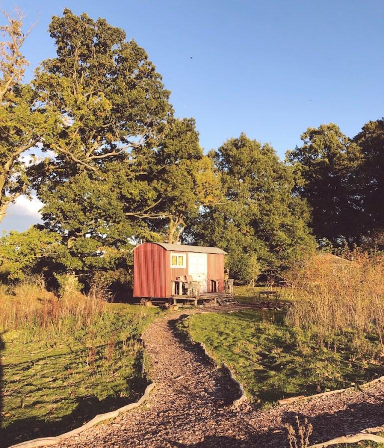 knepp safaris shepherd's huts