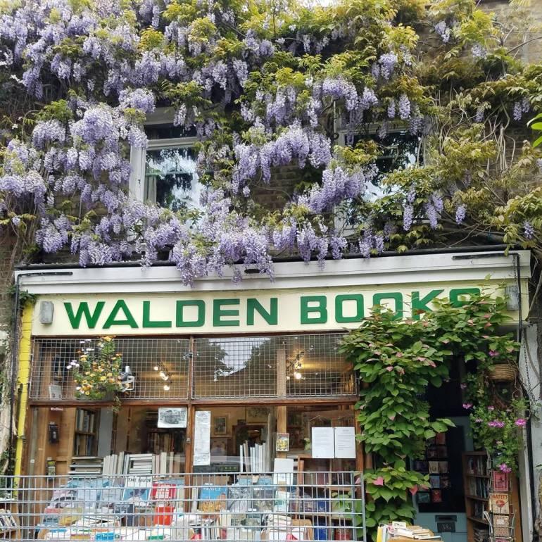 walden books camden
