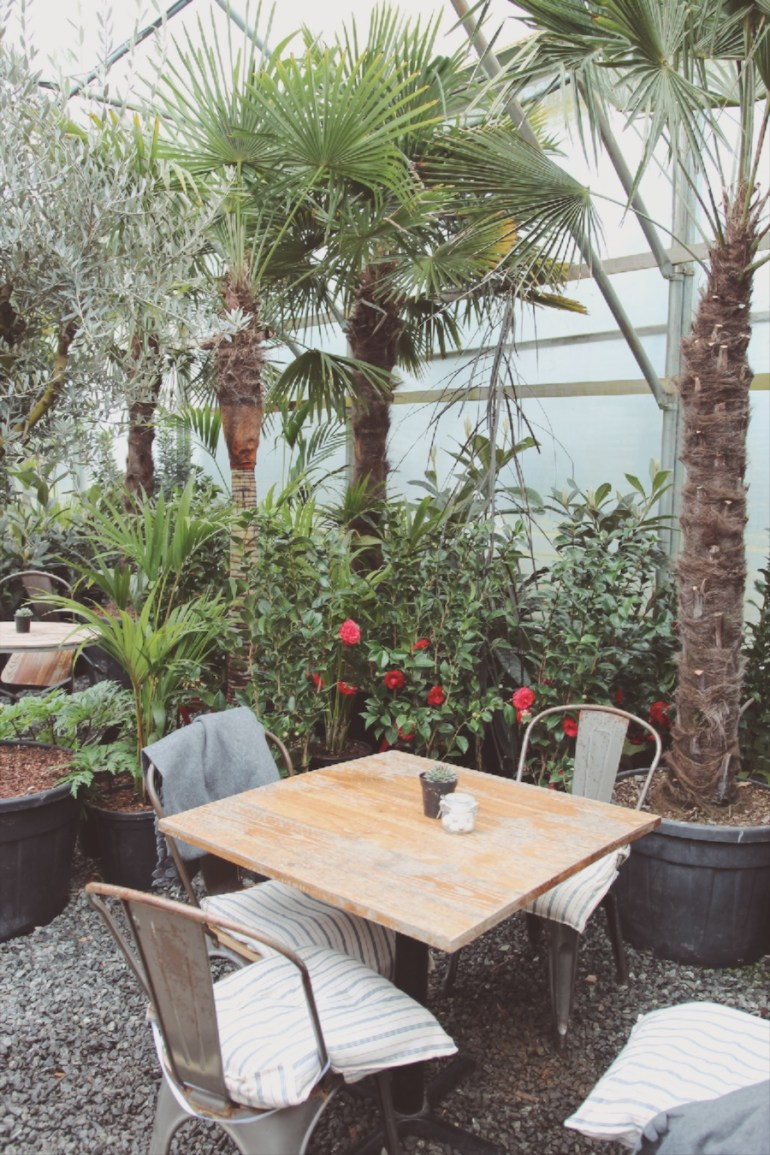 architectural plants cafe lunch sussex