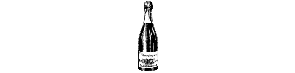 champagne bottle illustration