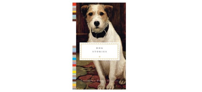 Dog Stories Book Cover
