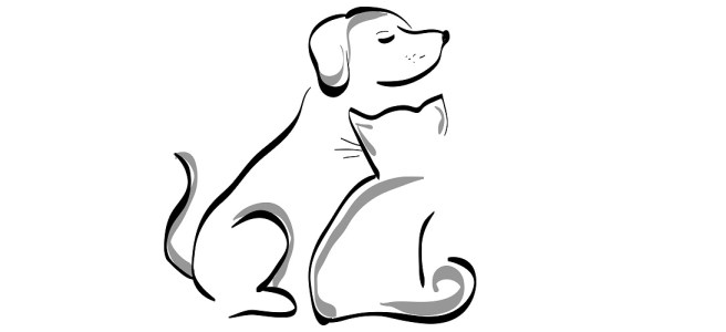 """Dog and cat illustration - """"That Sweet Spot"""" Flash Fiction"""
