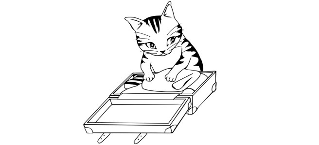 "Cat packing suitcase illustration - ""Smell Ya Later"" blog"