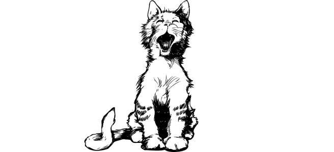 "Yawning kitten illustration - ""Kitten Cafe"" flash fiction"
