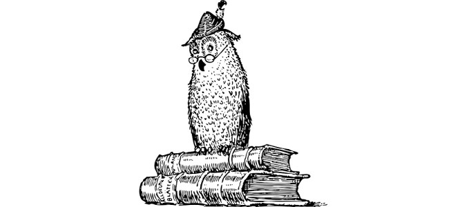 "Illustration of an owl sat on top of two books. ""Bye Bye Book Reviews"" blog"