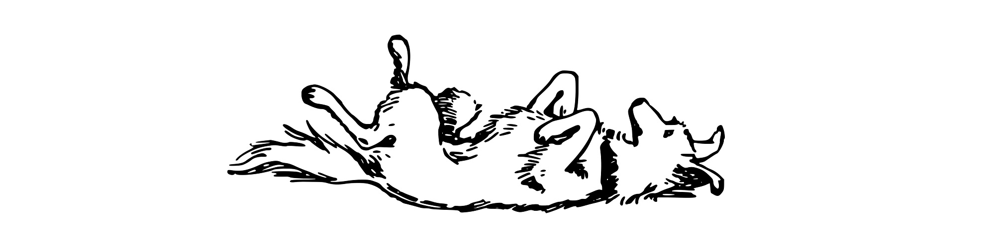 Dog rolling on its back illustration