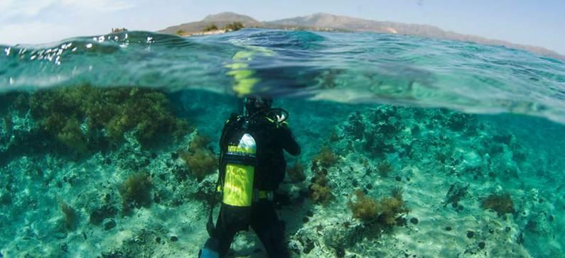 Η Ελλάδα στους κορυφαίους προορισμούς καταδύσεων της Μεσογείου