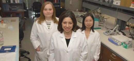 Δημιούργησαν «μίνι» ανθρώπινο στομάχι με τη βοήθεια βλαστοκυττάρων