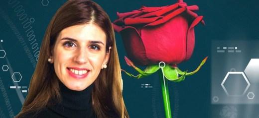 Ελληνίδα ερευνήτρια δημιούργησε ηλεκτρονικά τριαντάφυλλα
