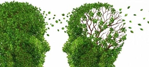 Έλληνες επιστήμονες βάζουν «φρένο» στην ανάπτυξη του Αλτσχάιμερ
