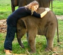 Chelsea-Anderson-baby-elephant