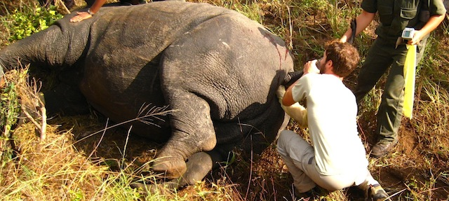 Elliott-Garber-Rhino-Kruger-South-Africa
