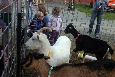 field trips kids near Saratoga Springs