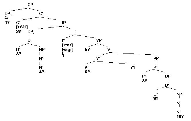 morphology tree diagram dball2 wiring ello complete diagrams cps