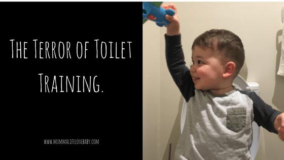 The Terror of Toilet Training