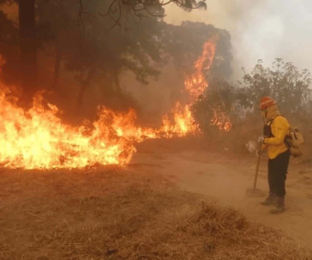 Image result for mexico arde