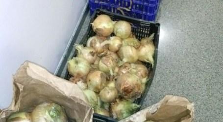 La policía local de Xirivella evita que roben más de 200 kilos de frutas y verduras