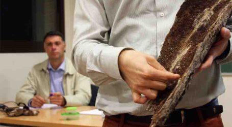 El Ayuntamiento de Torrent se vuelca en la conservación del monte de El Vedat