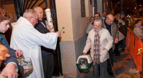 Mislata bendice a sus animales por San Antonio Abad