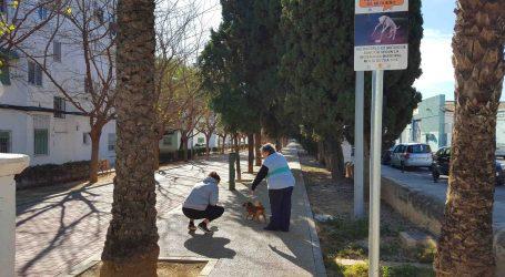 No recoger la caca de tu perro en Benetússer te costará de 75 a 300 euros de multa