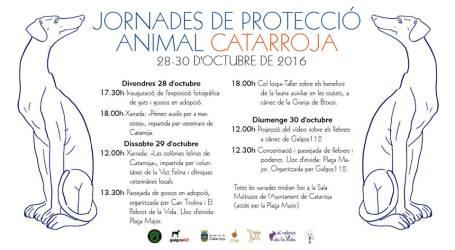 Catarroja organitza les primeres jornades de protecció animal