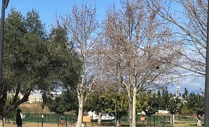 Paterna instala fuentes de doble uso en varias zonas verdes y de esparcimiento canino