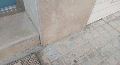 La Asociación de Vecinos de Massanassa urge al equipo de gobierno a actuar contra las plagas