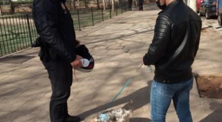 La Policía Local de Massamagrell comienza una campaña de control del censo canino