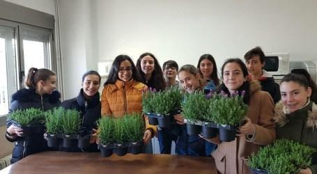 L'IES de Rafelbunyol continúa apostant per la sostenibilitat i el desenvolupament d'un hort escolar