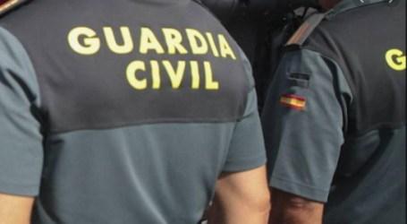 La Guardia Civil investiga a dos personas por estafar con licencias de cítricos en Picassent