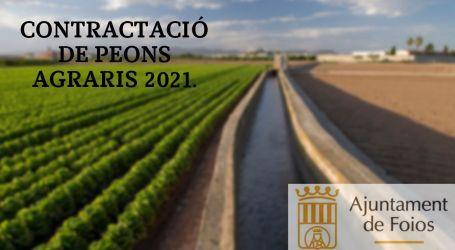 L'Ajuntament de Foios contractarà sis peons agrícoles durant els mesos d'estiu