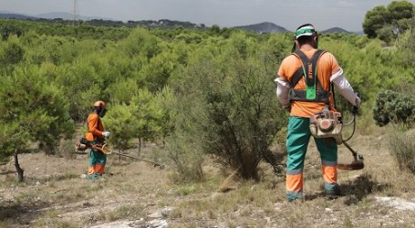 Paterna refuerza la vigilancia en el parque natural de La Vallesa por las altas temperaturas y el riesgo de incendio