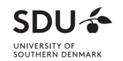 منحة جامعة جنوب الدنمارك للحصول على الدكتوراه 2020 (ممولة بالكامل)