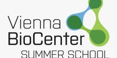 منحة مدرسة فيينا الصيفية في النمسا 2020 (ممولة بالكامل)