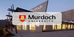 منحة جامعة مردوخ للحصول على البكالوريوس في أستراليا 2021