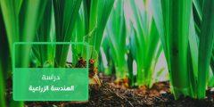 الهندسة الزراعية | كل ما تريد معرفته عن تخصص الهندسة الزراعية