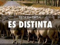 ESTA_EMPRESA_ES_DISTINTA