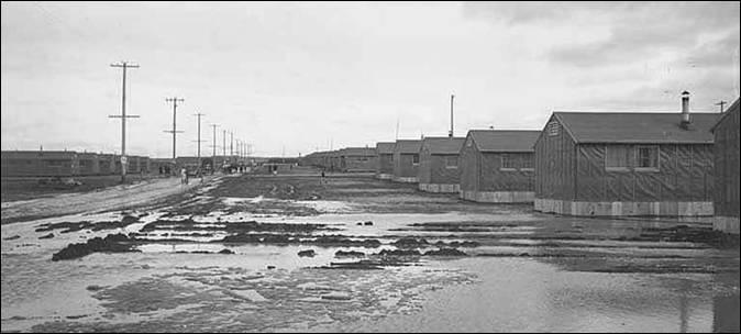 Minidoka Relocation Center