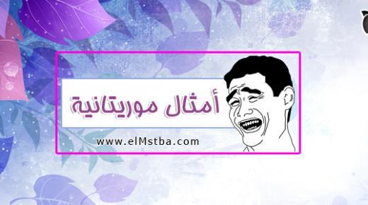 أشهر أمثال موريتانية شعبية قديمة ومعناها