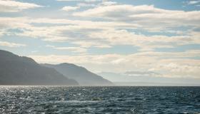 أهم البحار الثانوية في المحيط الهادئ