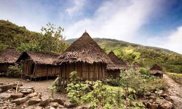 أهم المعلومات عن جزيرة غينيا الجديدة