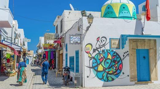 أهم مميزات تونس