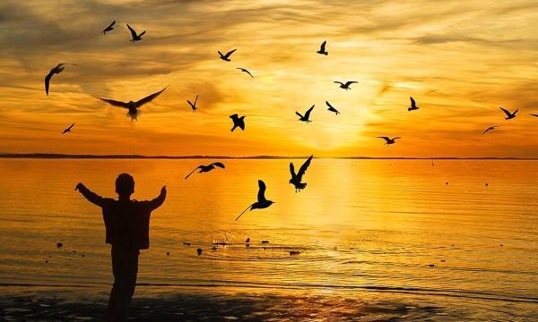 تفسير حلم رؤية الفرح في المنام