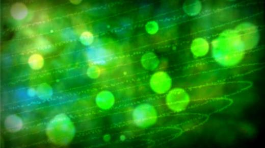 تفسير حلم رؤية اللون الأخضر فى المنام