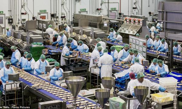 تفسير حلم رؤية المصنع في المنام