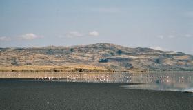ماذا تعرف عن بحيرة النطرون ؟