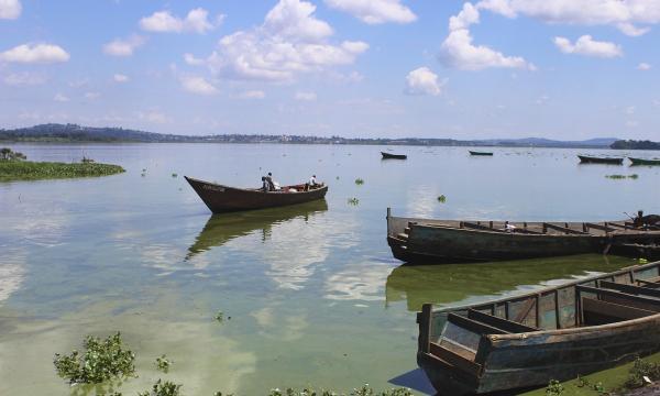 ماذا تعرف عن بحيرة فيكتوريا ؟