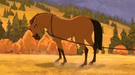 ذكاء حصان قصة الحصان والبئر